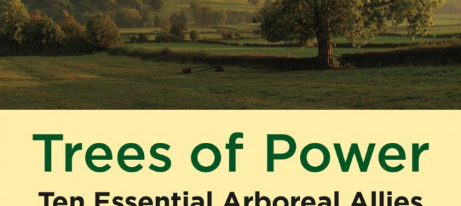 Trees of Power: A Book Review